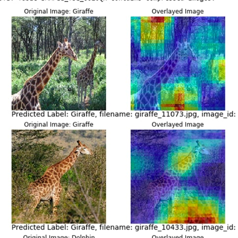 Heat maps generated using the score results from a Convolutional Neural Network